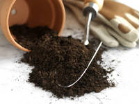 ガーデニング 土と植木鉢