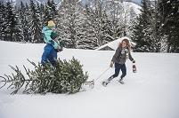クリスマスツリーを運ぶ家族