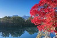福島県 紅葉の五色沼 毘沙門沼と磐梯山(会津富士)