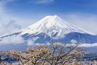 日本 富士箱根伊豆国立公園