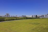 東京都 豊洲市場 屋上緑化広場