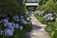 神奈川県 大巧寺