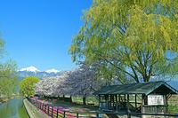 長野県 安曇野拾ケ堰から常念岳遠望