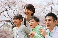 お花見する仲の良い日本人家族