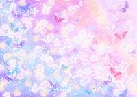 桜とチョウの色彩