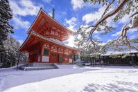 和歌山県 高野町 金剛峯寺