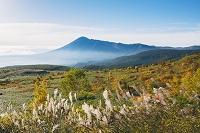 岩手県 紅葉の八幡平より岩手山(南部富士)朝景