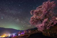 長野県 勝間薬師堂のしだれ桜と天の川