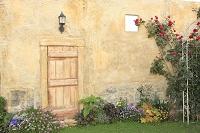 茶色い壁とバラの咲く庭
