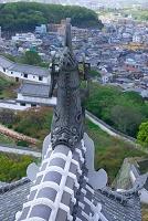 姫路城の鯱