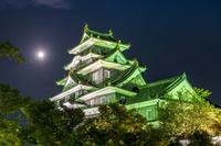 岡山県 岡山城のライトアップ