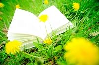 たんぽぽ畑に置かれた本