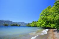 青森県 新緑の御前ヶ浜から甲島と鎧島 十和田湖