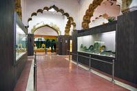 インド デリー ラール・キラー 博物館