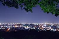 熊本市街夜景