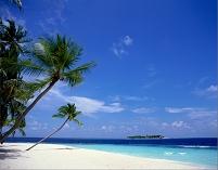 モルディブ 海 海岸