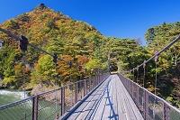新潟県 荒川峡もみじライン 鷹の巣つり橋