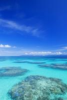 沖縄県 波照間島 サンゴ礁