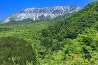 鳥取県 新緑の鍵掛峠より大山(伯耆富士)