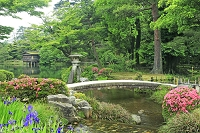 兼六園の徽軫灯籠とサツキツツジ 石川県