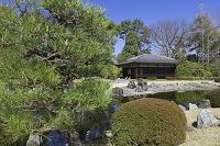 京都 二条城 清流園