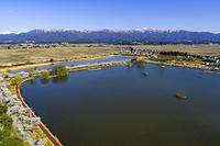 新潟県 サクラ 瓢湖 ラムサール条約の登録湿地 日本の重要湿...