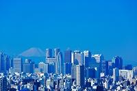 東京都 文京区シビックセンターから見る新宿のビル群と富士山