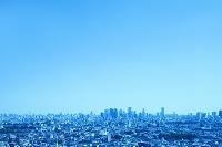 東京都 練馬区役所からみる街並
