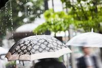 梅雨 雨の日の通行人