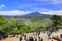 山梨県 天上山新展望台デッキから望む残雪, 富士山と新緑の木々