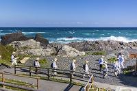 高知県 室戸の海とお遍路さん