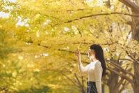 イチョウの紅葉を楽しむ日本人女性