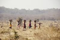 頭に荷物をのせ運ぶ女性たち