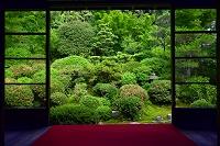 京都府 安楽寺