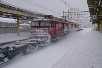 雪の浅虫温泉駅 青い森鉄道 JR貨物のコンテナ列車