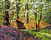 デイヴィッド・ロイド・グローバー 「SPRING FANTASY FOREST」