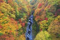 福島県 中津川渓谷の紅葉