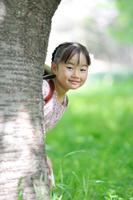 桜の樹の陰から顔を出す日本人の女の子