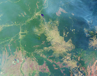 ブラジル アマゾンの森林伐採(2001年)
