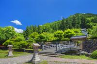 兵庫県 春の出石城跡
