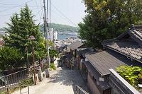広島県 千光寺山