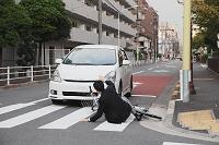 自転車 交通事故