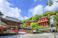 佐賀県 祐徳稲荷神社の春