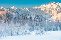 長野県 白馬村 松川と雪景色