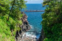 静岡県 城ヶ崎海岸 門脇吊橋