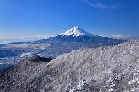 山梨県 三ツ峠から見た厳冬の富士山