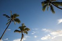 ハワイ オアフ島 ハレイワビーチパーク