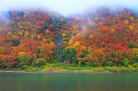 山形県 朝もやの最上川 白糸の滝