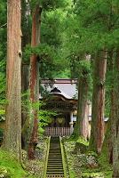 福井県 初夏の永平寺・唐門(勅使門)
