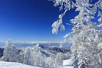 長野県 冬の志賀高原から北アルプス